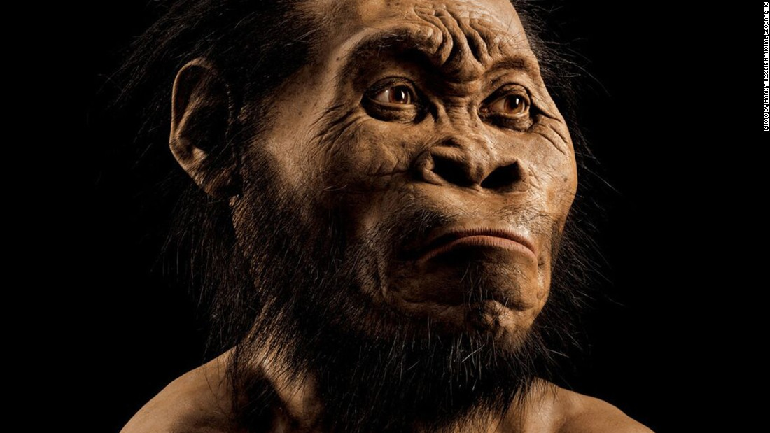 Scientists say they've discovered a new species of human relative in the Rising Star cave in the Cradle of Humankind world heritage site outside Johannesburg