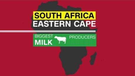 spc africa view milk_00001815