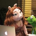 the muppets kermit denise