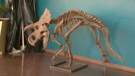colorado new dinosaur species unveiled pkg_00013422