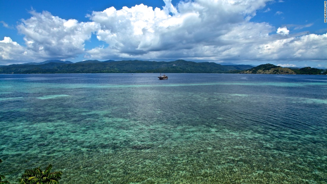The Flores Sea is dotted with islands with pristine beaches and crystal-clear water to dive in.