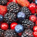 09.popular-fruits.berries