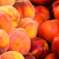 10.popular-fruits.peaches-nectarines