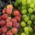 11.popular-fruits.grapes