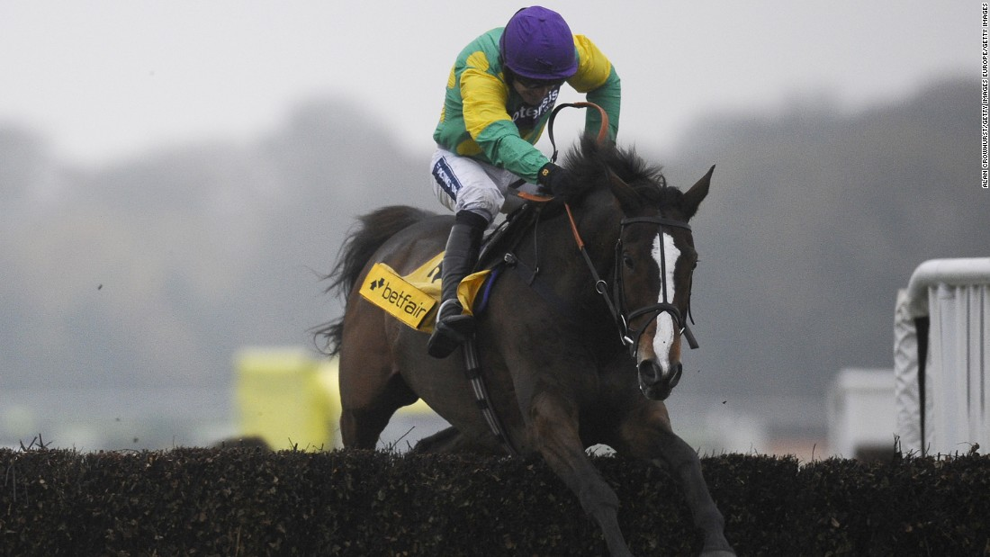 "When French thoroughbred Kauto Star died earlier this year after a fall in his paddock, his former trainer Paul Nicholls said the horse ""had touched lots of hearts"" as well as winning $6 million in prize money in an illustrious career."