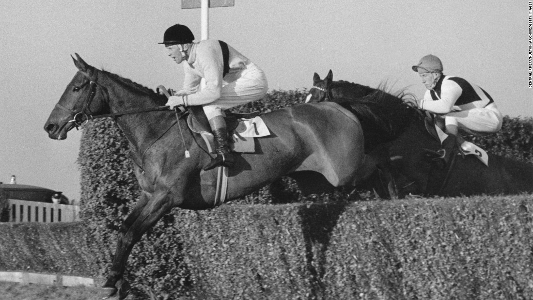 A three-time Cheltenham Gold Cup winner, Arkle became a national legend in the Republic of Ireland, the population claiming his strength came from drinking Guinness twice a day.