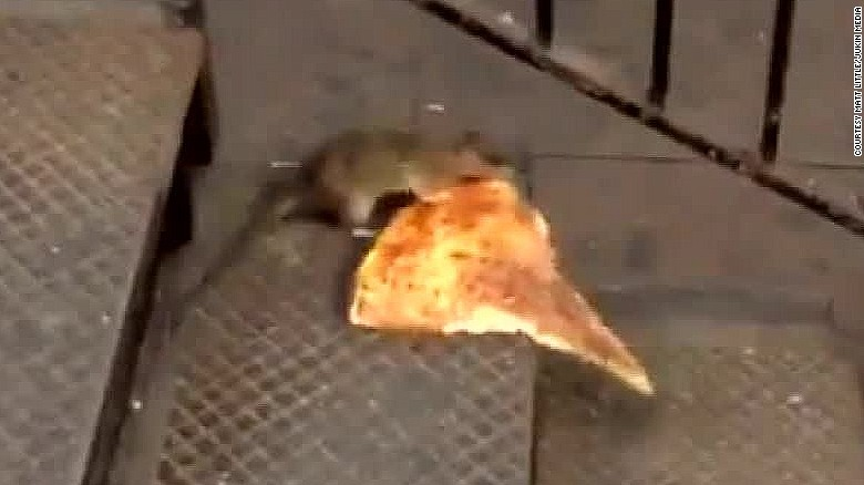 #Pizzarat becomes Internet sensation