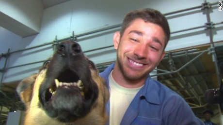 See soldier's emotional reunion with dog
