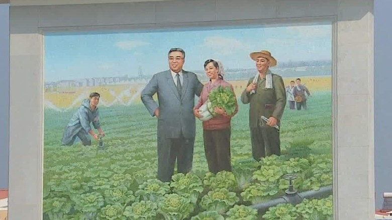 north korea famous farmer ripley_00022805