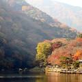Gallery Kyoto Katura River