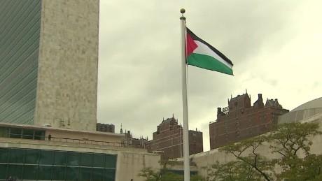 cnnee vo palestinian flag un _00002014
