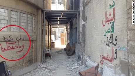 Egypt: 'Homeland' hijacked by graffiti artists