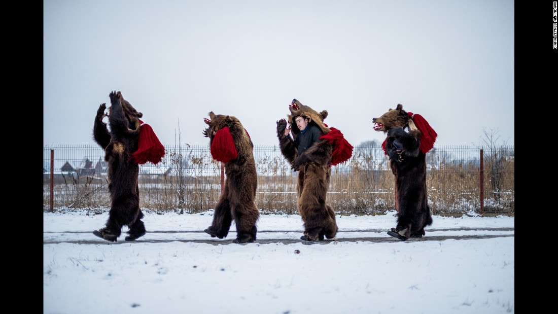 The bear dancing has its roots in an old forest Gypsy practice of bringing bears to towns. Residents would pay the Gypsies, also known as Roma, to let bear cubs walk on their backs to cure backaches.