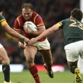 jamie roberts wales south africa