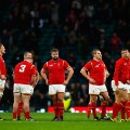 wales dejected south africa rugby