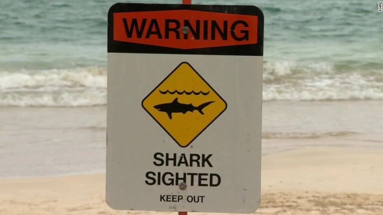 Swimmer attacked by shark in Hawaii