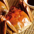 Crabs螃蟹