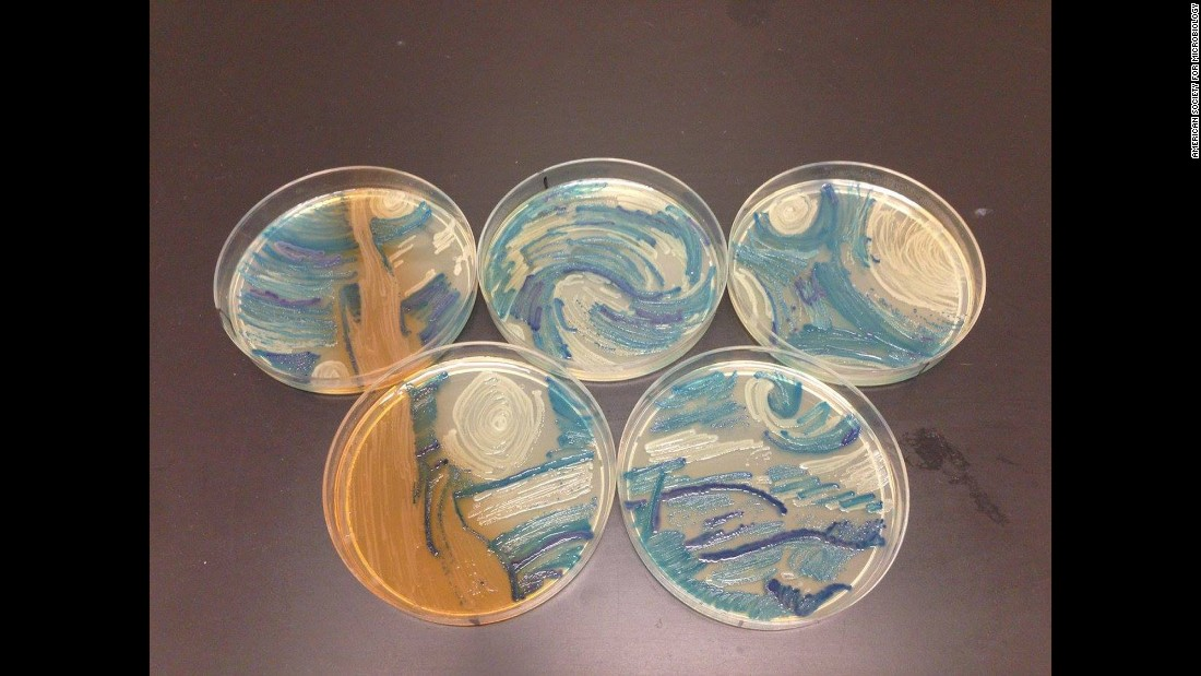 "Scientist used bacteria to create a version of Vincent van Gogh's  ""Starry Night."""