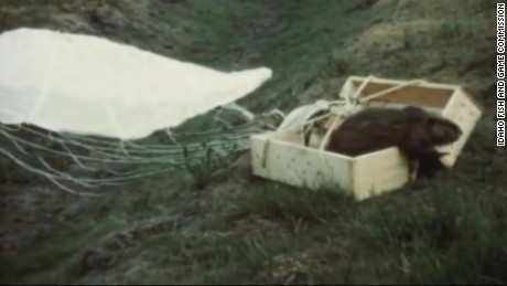 Long lost parachute beaver footage cnni_00004809