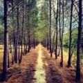Instagram travel photo 4