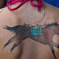 american pharoah tattoo