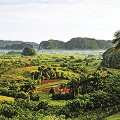 Cuba-Valle-de-Vinales-RESTR