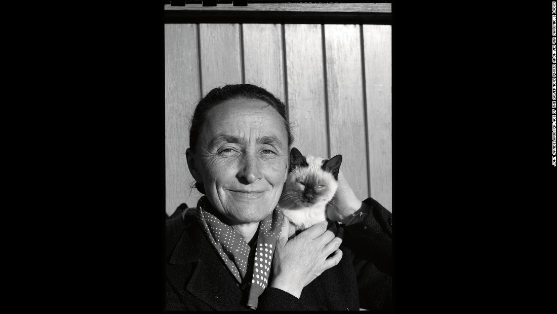 Painter Georgia O'Keeffe may have lived in the spartan American Southwest, but she (and her husband, photographer Alfred Stiglitz) were never far from feline friends. They kept a few in their New Mexico house.