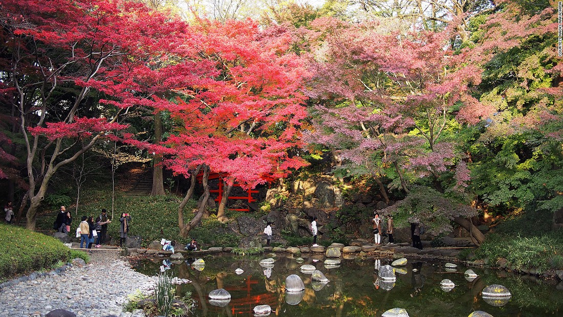 Next to the Tokyo Dome City entertainment complex, Koishikawa Korakuen Garden is a city center park bursting in fall with red and orange maple trees.
