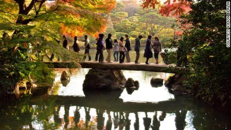 Tokyo's autumn colors