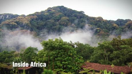 Inside Africa - Rwanda's Nyungwe Forest National Park_00002028