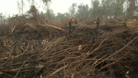 Indonesia Fires - Molko PKG_00004230