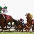 melbourne cup payne race 7