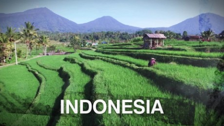 CNN On the Road Indonesia 11-9-15_00001910.jpg