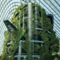 Cooled Conservatories