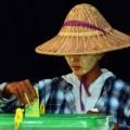 11 myanmar elections 2015