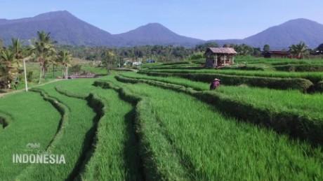 spc on the road indonesia unlocking subak_00001130