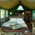 Macatoo - tent 2
