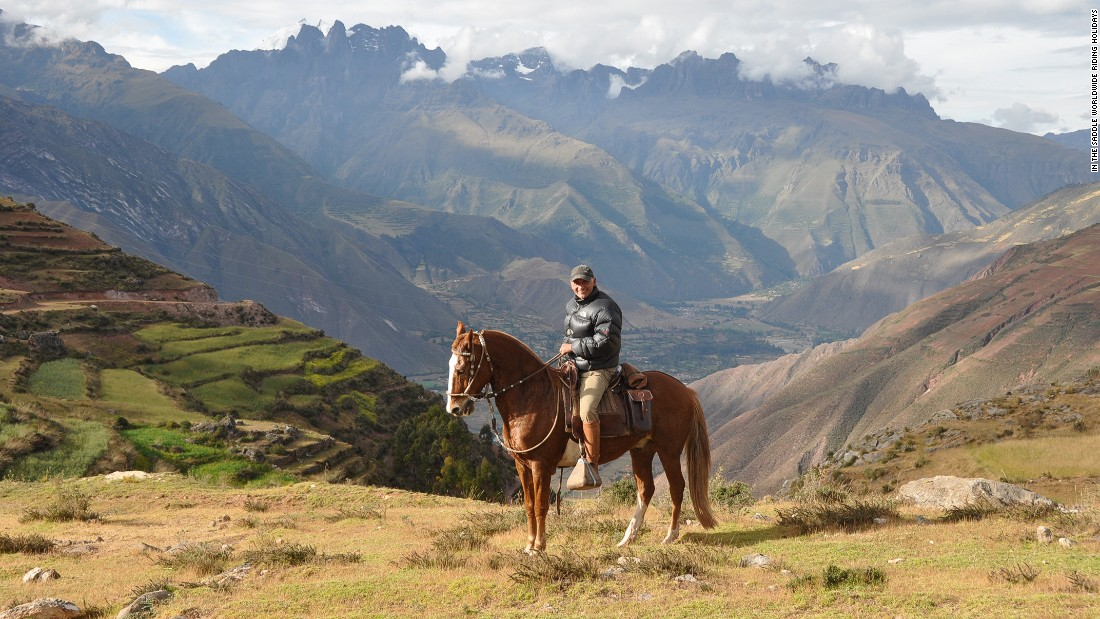 """People call the Peruvian Paso the Rolls Royce of horses,"" says Sales."