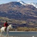 horse holidays dart nz 4