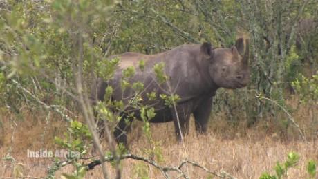 spc inside africa ol pejeta conservancy b_00023115