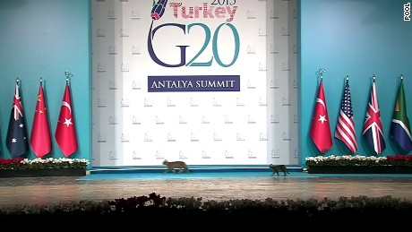 RX 761 - Obama/G20/Antalya/Turkey/Pool Path 1