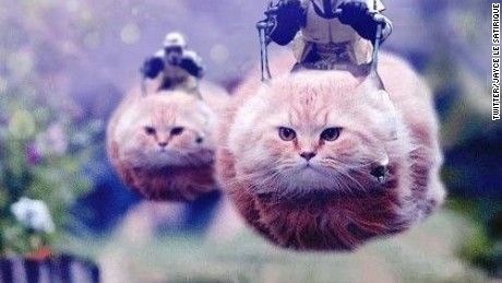 "An image of ""hovercats"" used in Brussels counter-terror operations, as tweeted by Twitter user Jayce le Satirique."