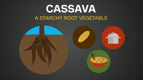 spc africa view cassava_00001308