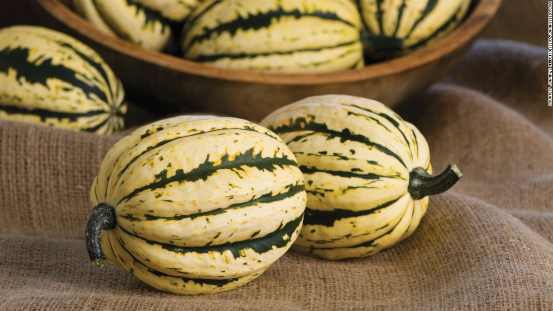 The Jester Acorn Squash is great for your fall menu. It's sweetness isn't overpowering and it's great for stuffing and roasting.