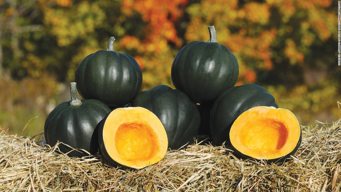 "This deliciously starchy and sweet squash is on the smaller size.  <a href=""http://biolsci.unh.edu/faculty/loy"" target=""_blank"">Brent Loy</a> at the University of New Hampshire created it and was an All-American award winner for 2009.  The seeds and fruit are great for roasting."