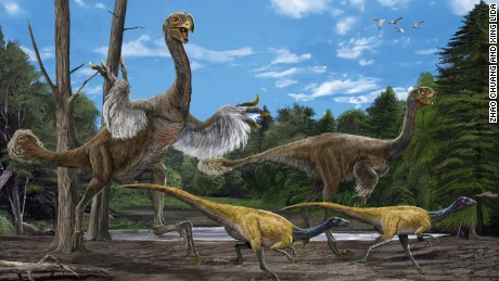 China's dinosaur discoveries