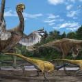 gigantoraptor artist reconstruction