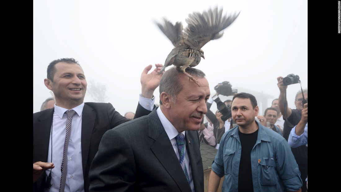 <strong>August 14:</strong> Turkish President Recep Tayyip Erdogan, center, releases a bird during an opening ceremony for a new mosque in Rize, Turkey.