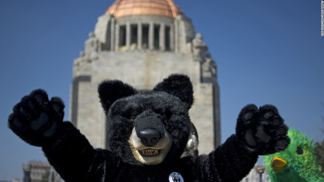 Activists of the World Wildlife Fund wearing endangered species costumes perform at the Revolution Monument in Mexico City.