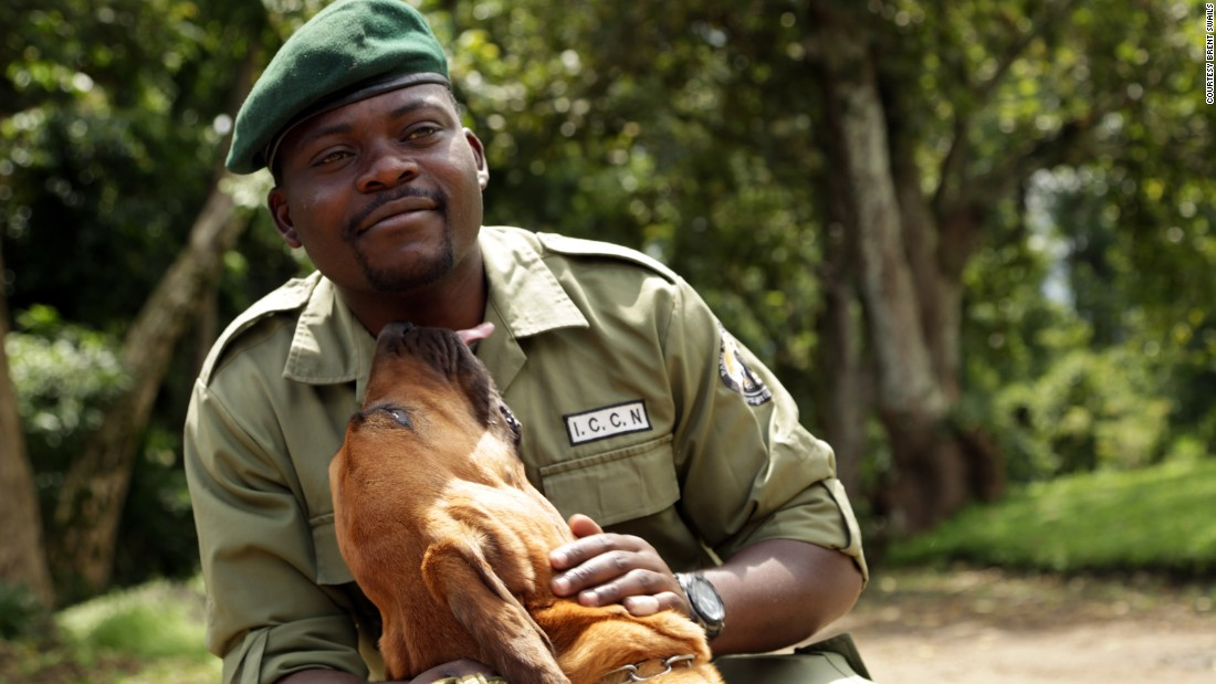 "Virunga Ranger Gracien Muyisa Sivanza, with his bloodhound Sabrina. ""People think that the park is only for us rangers. Everyone needs this park. When we talk to people, we need proof. Now we have that proof,"" Siivanza says of Virunga's ambitious clean energy project."